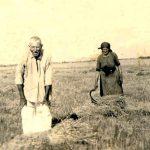 Alte Menschen bei der Feldarbeit